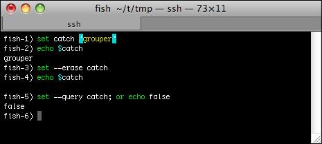 fish_uso_mejora_terminal_unix