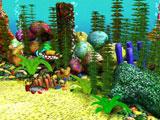5_mar_acuri_peces_agua